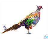 Urban Pheasant by Helen Gorrill, Painting